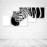 Quadro Decorativo - Zebra - Composto de 5 Quadros