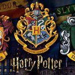 5705533_Quebra-Cabeca-Adulto-Harry-Potter-352-Pecas-Grow-3615_2_Zoom